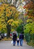 De herfstpark in Vyborg, Rusland Royalty-vrije Stock Foto's