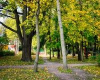 De herfstpark in Vyborg, Rusland Royalty-vrije Stock Foto