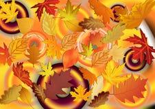 De herfstpatroon van bladeren Abstracte achtergrond en textuur voor DE Stock Foto's