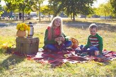 De herfstpicknick Stock Afbeeldingen