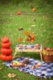 De herfstpicknick in een park Royalty-vrije Stock Fotografie