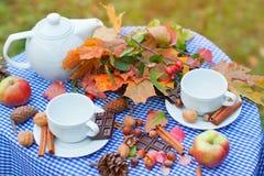 De herfstpicknick in een park royalty-vrije stock afbeeldingen