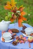 De herfstpicknick in een park stock fotografie