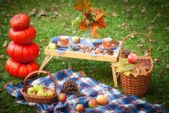 De herfstpicknick in een park stock foto