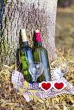 De herfstpicknick met wijnflessen en glazen - romantische datum Stock Fotografie