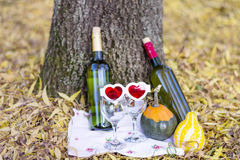 De herfstpicknick met wijnflessen en glazen - romantische datum Stock Afbeeldingen