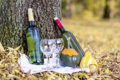 De herfstpicknick met wijnflessen en glazen - romantische datum Stock Foto's
