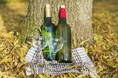 De herfstpicknick met wijnflessen en glazen - romantische datum Stock Foto