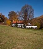 De herfstplatteland dichtbij Plauen met weide, boom en molen Royalty-vrije Stock Afbeeldingen