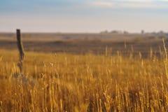 De herfstplatteland in Kansas Royalty-vrije Stock Afbeeldingen