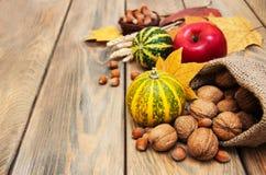 De herfstpompoenen en noten Stock Foto's