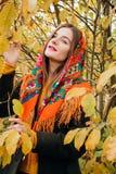 De herfstportret, jong mooi meisje met lang haar in Russische sjaal en geel gebladerte stock afbeelding