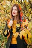 De herfstportret, jong mooi meisje met lang haar in Russische sjaal en geel gebladerte royalty-vrije stock afbeeldingen