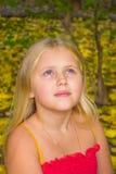 De herfstportret van een meisje Stock Afbeeldingen