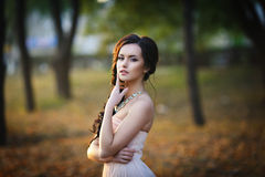 De herfstportret van een mooi meisje Royalty-vrije Stock Afbeelding