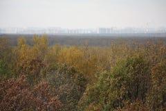 De herfstrand van Moskou Stock Afbeelding
