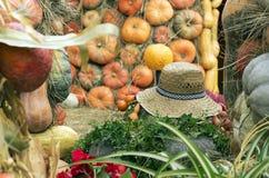 De herfstsamenstelling met een strohoed en pompoenen royalty-vrije stock foto's
