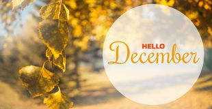 De herfstsamenstelling van Hello December Gele en oranje bladeren op hemelachtergrond royalty-vrije stock afbeelding