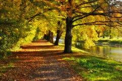 De herfstscène Stock Foto's