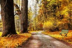 De herfstscène Royalty-vrije Stock Afbeeldingen