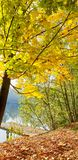 De herfstscène bij een meer met een pijler in centrum van het beeld royalty-vrije stock fotografie