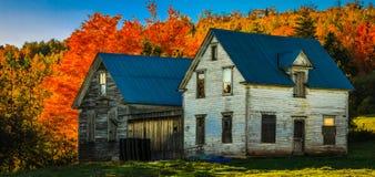 De herfstscène, het kleurrijke veranderen in het midden van Oktober in New Brunswick, Canada stock afbeelding