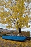 De herfstscène in Kastoria, Griekenland stock afbeelding