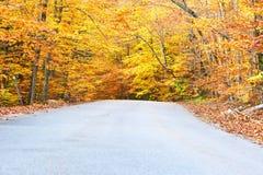 De herfstscène met weg Stock Afbeeldingen