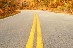 De herfstscène met weg Royalty-vrije Stock Afbeelding