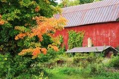 De herfstseizoen bij platteland Royalty-vrije Stock Foto