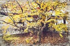De herfstseizoen bij Tofukuji-tempel, Japan Digitaal Art Impasto Oil stock foto's