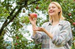 De herfstseizoen in boomgaard boomgaard, tuinmanmeisje in appeltuin Gezonde tanden honger vitamine en het op dieet zijn voedsel g royalty-vrije stock afbeelding