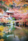 De herfstseizoen, de kleur van de verlofverandering van rood in Tempel Japan Royalty-vrije Stock Afbeelding