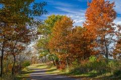 De herfstsleep, het regionale park van bunkerheuvels, Minnesota Stock Foto