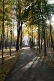 De herfststeeg en tempel vooruit royalty-vrije stock afbeeldingen