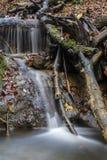 De herfststemming aan beek Stock Fotografie
