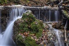 De herfststemming aan beek Stock Foto