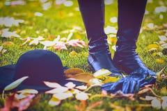 De herfststijl in het park Het seizoen van de herfst Weg in dalingsbos stock afbeelding