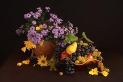 De herfststilleven Royalty-vrije Stock Foto