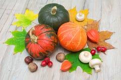 De herfststilleven. groenten, kastanjes, bessen, paddestoelen en Royalty-vrije Stock Afbeeldingen