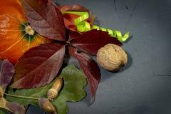 De herfststilleven met bladeren, pompoen en noten stock foto