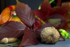 De herfststilleven met bladeren, pompoen en noten royalty-vrije stock foto's
