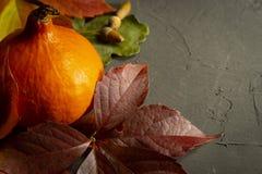 De herfststilleven met bladeren, pompoen en noten royalty-vrije stock afbeelding