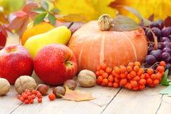 De herfststilleven met fruit, groenten, bessen en noten Stock Fotografie