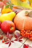 De herfststilleven met fruit, groenten, bessen en noten Stock Afbeeldingen