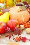 De herfststilleven met fruit, groenten, bessen en noten Stock Foto's
