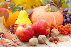 De herfststilleven met fruit, groenten, bessen en noten Stock Foto
