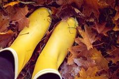 De herfststilleven met gele rubberlaarzen Stock Foto