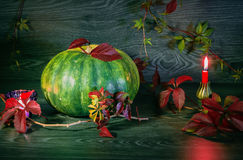 De herfststilleven met pompoen Stock Afbeelding