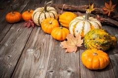 De herfststilleven met pompoenen en bladeren Stock Afbeeldingen